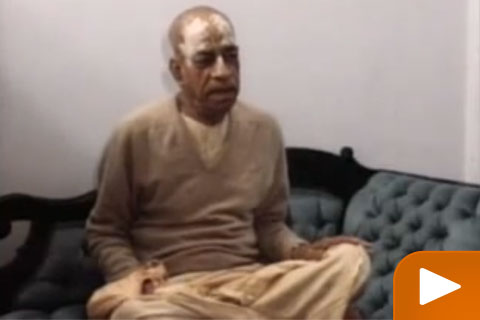 Srila Prabhupada on illict sex and social work